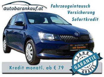 Skoda Fabia Active 1,0 bei autobarankauf.at – E.R. Auto Handels GmbH in